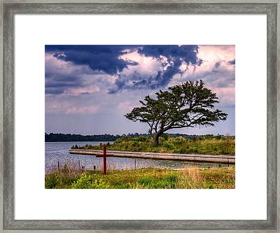 Weathering The Storm Framed Print by David Byron Keener