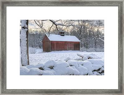 Weathering Winter Framed Print by Bill Wakeley