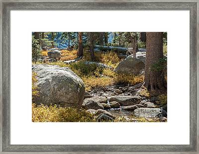 Weaver Lake 1-7699 Framed Print