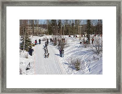 Weaving Through Anchorage Framed Print