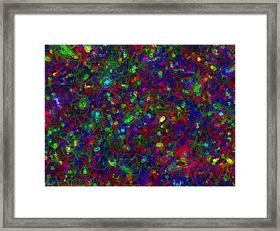 Web Of Chance Framed Print