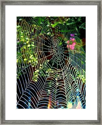 Web Of Entanglement Framed Print by Shirley Sirois