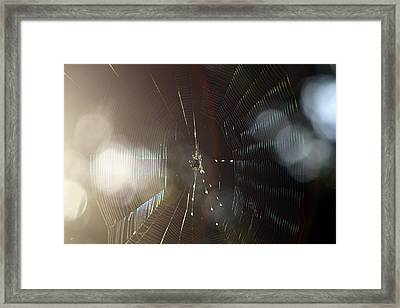 Web Of Flares Framed Print