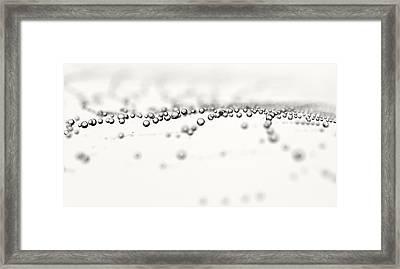 Web Scape Framed Print