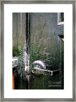 Web Security Framed Print by Michael Hoard