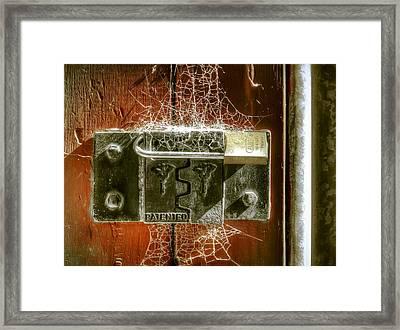 Web Security Framed Print