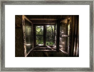 Web Window Framed Print by Nathan Wright