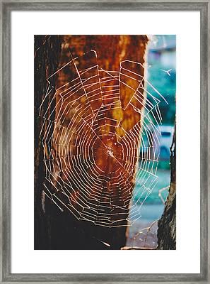 Web Work Framed Print