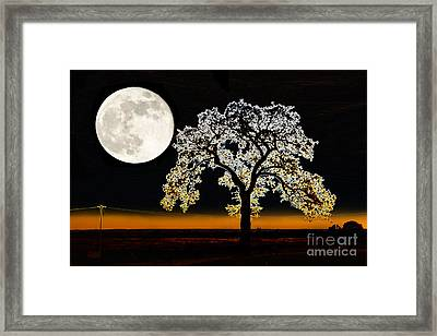Wedded To The Moon Framed Print by Betty LaRue