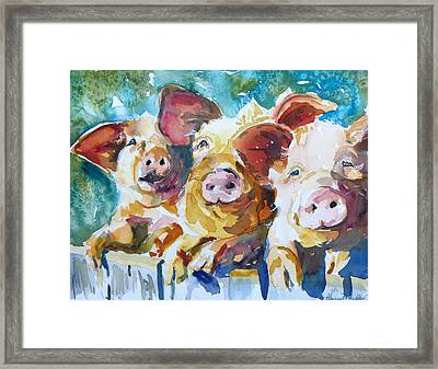 Wee 3 Pigs Framed Print by P Maure Bausch