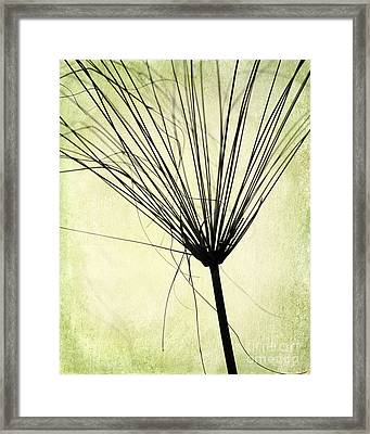 Weed In Green Framed Print by Sabrina L Ryan
