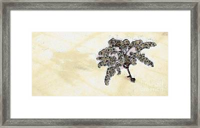 Weeds In The Snow Framed Print