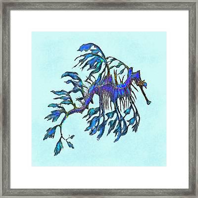 Weedy Seadragon Framed Print by Jane Schnetlage