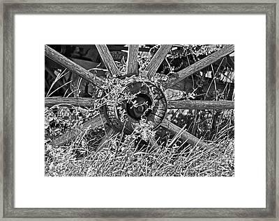 Weedy Wheel  Framed Print by Juls Adams