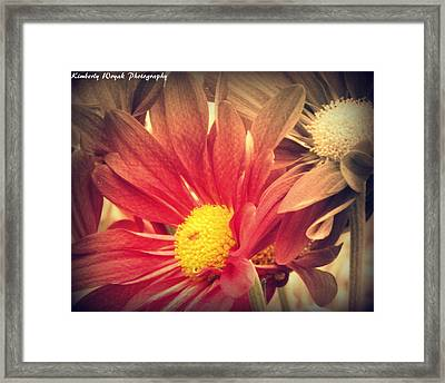 Weekend Day Framed Print