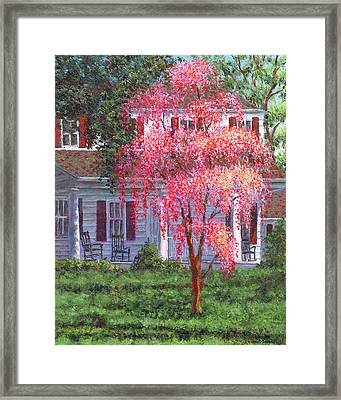 Weeping Cherry By The Veranda Framed Print