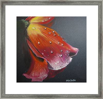 Weeping Flower Framed Print
