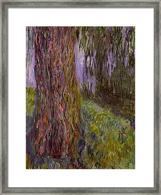 Weeping Willow And The Waterlily Pond Framed Print