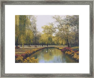 Weeping Willow Framed Print by Diane Romanello