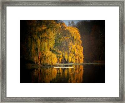 Weeping Willow Pier Framed Print by Michael L Kimble