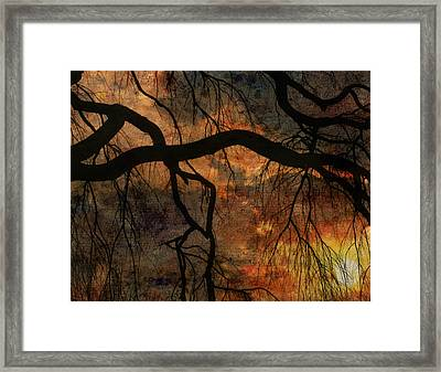 Framed Print featuring the digital art Weeping Willow Sunset by Bruce Rolff