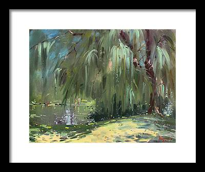 Weeping Willows Framed Prints