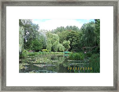 Weeping Willows Framed Print by James Dolan