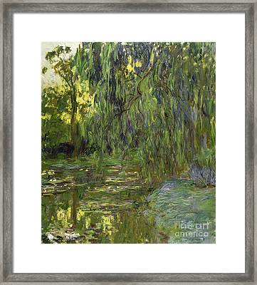 Weeping Willows The Waterlily Pond At Giverny Framed Print