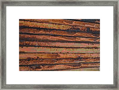 Weighted Framed Print by Kelly Kitchens