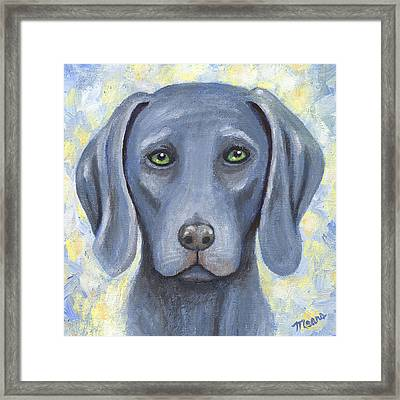 Weimaraner Puppy Portrait Framed Print