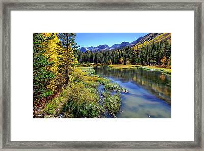 Weir Pond Framed Print by Scott McGuire
