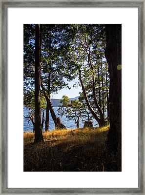 Welbury Framed Print