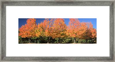 Welcome Autumn Framed Print