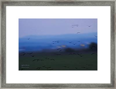 Welcome - Happy Landing Framed Print by Itzhak Richter