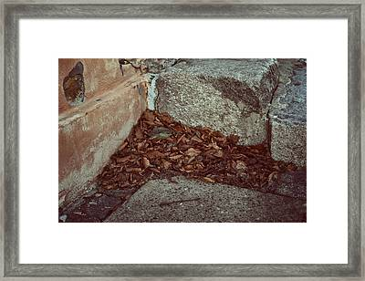 Welcome Mat Framed Print by Odd Jeppesen