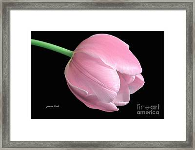 Welcome Spring In Pink Framed Print by Jeannie Rhode