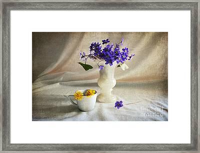 Welcome Spring Framed Print