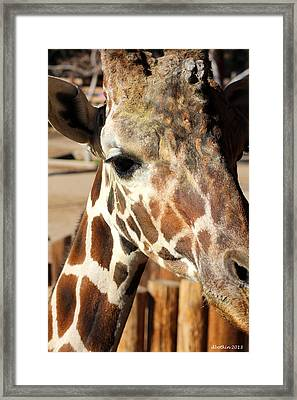 Welcome To My World Framed Print by Dick Botkin