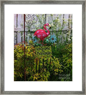 Welcome To Paradise Framed Print by Barbara Griffin
