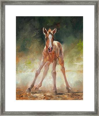 Welcome To The World Framed Print by David Stribbling