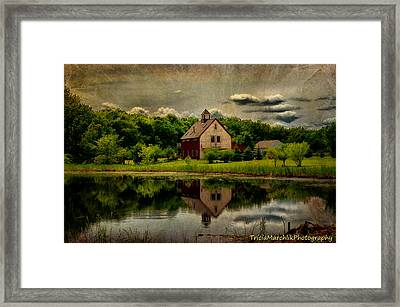 Welcoming Summer Framed Print by Tricia Marchlik
