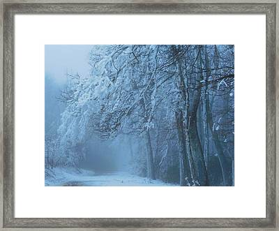 Welcoming The Light Framed Print