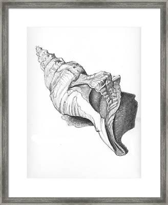 Welk Framed Print