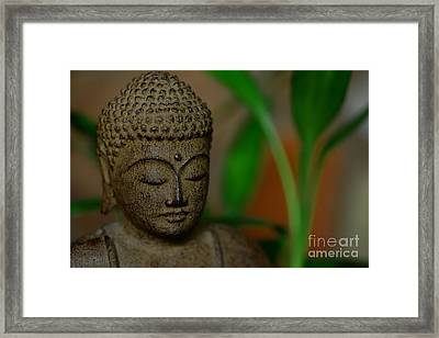 Well Being Framed Print by Paul Ward