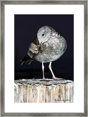 Well I Was Sleeping Framed Print by Barbara Snyder