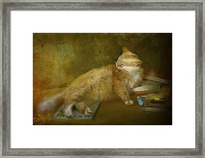 Well Read Framed Print