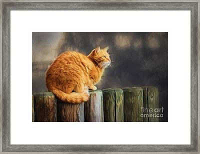 Wellness Framed Print by Jutta Maria Pusl