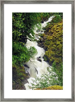 Wells Creek, Mount Baker-snoqualmie Framed Print