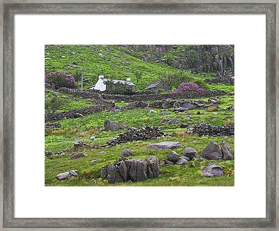 Welsh Mountain Cottage Framed Print by Jane McIlroy