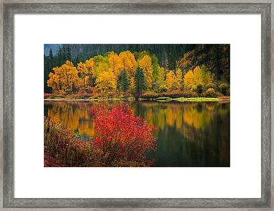 Wenatchee River Reflections Framed Print by Dan Mihai